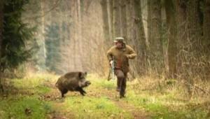 When Hunter Becomes Prey (7 photos) 2