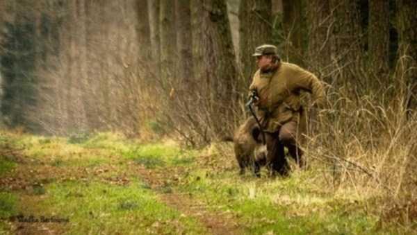 hunting-wild-boar (6)