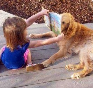 Pets Who Have Mastered the Art of Patience (30 photos)