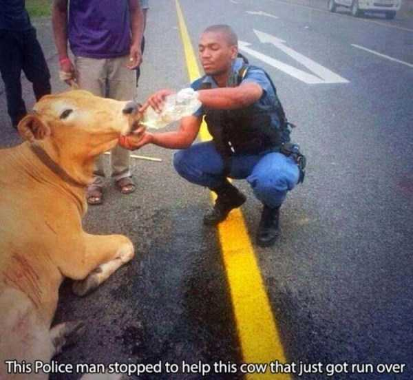 police-officers-are-humans (20)