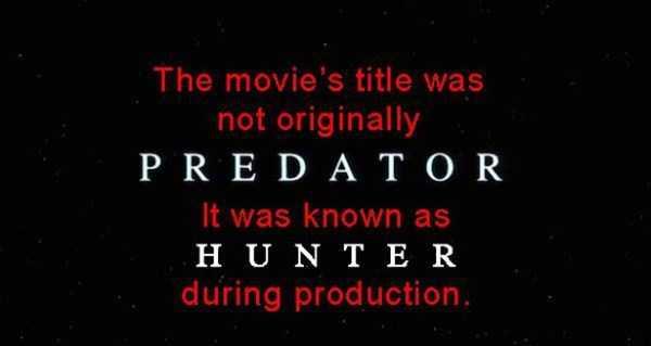 predator-facts (10)