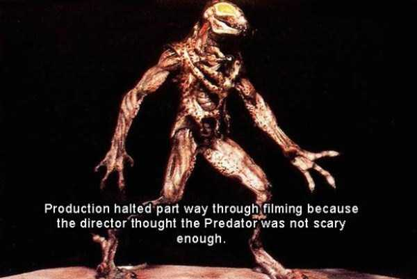 predator-facts (3)