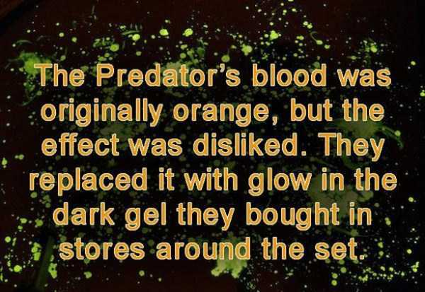 predator-facts (9)