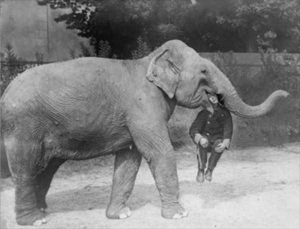 vintage-circus-photos (13)