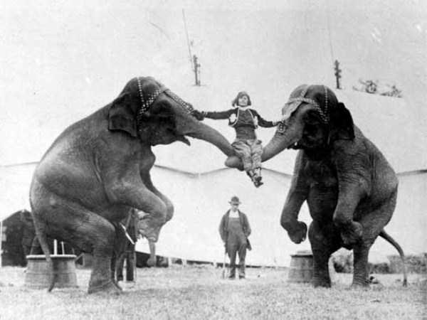 vintage-circus-photos (2)