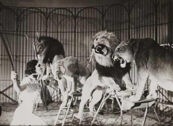 vintage-circus-photos (41)