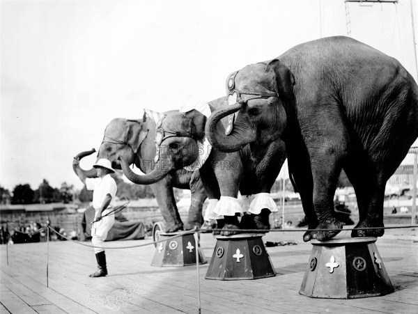 vintage-circus-photos (42)