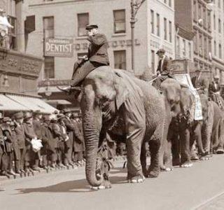 Circus Photos from a Time Long Gone (50 photos)