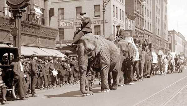 vintage-circus-photos (49)