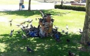 Birds Being Jerks (31 photos) 27