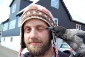 Birds Being Jerks (31 photos) 9