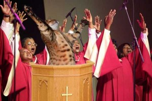 Oddly Funny Photoshopped Photos (39 photos) 1