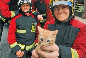Oddly Funny Photoshopped Photos (39 photos) 27