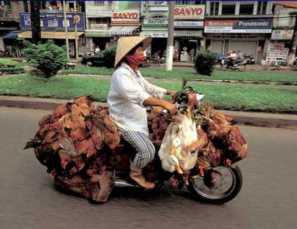 motorcycles-carrying-heavy-loads (3)