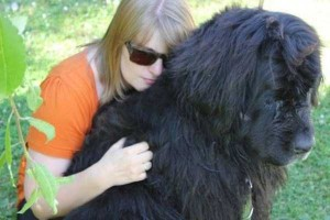 43 Dogs Who Are Clearly Not Regular-Sized (43 photos) 42