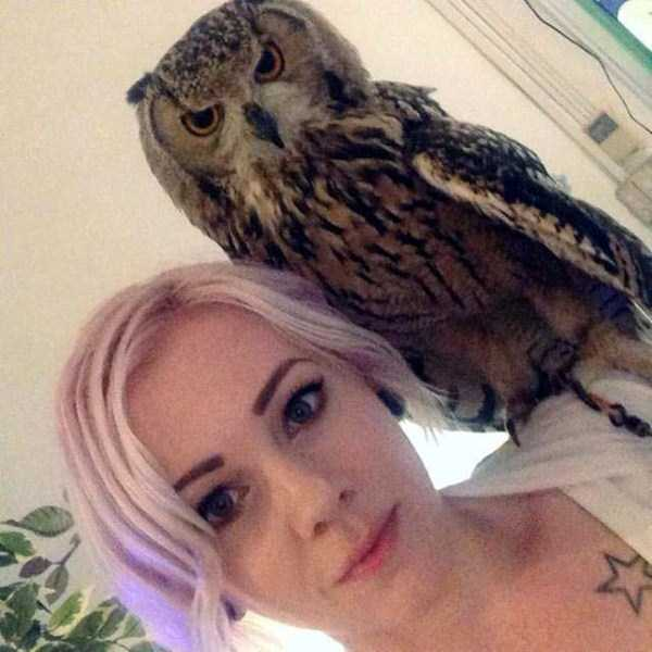 animals-who-dont-like-selfies (10)