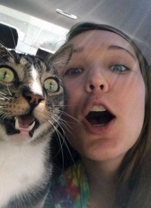 Pets Who Clearly Hate Selfies (26 photos) 17
