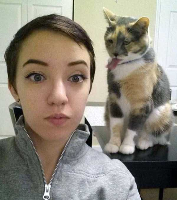 animals-who-dont-like-selfies (19)