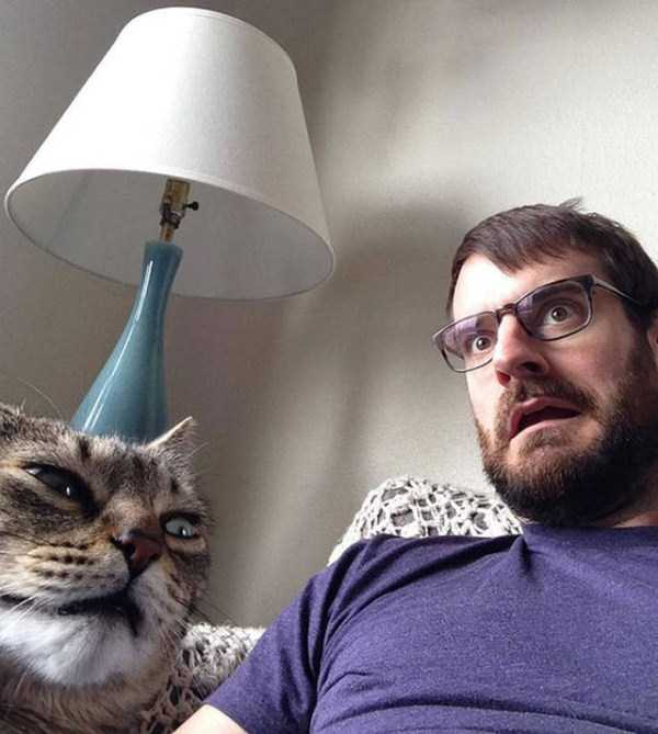 animals-who-dont-like-selfies (8)