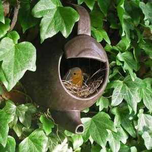 Amazing Birds' Nests Built In The Most Unusual Places (35 photos) 14