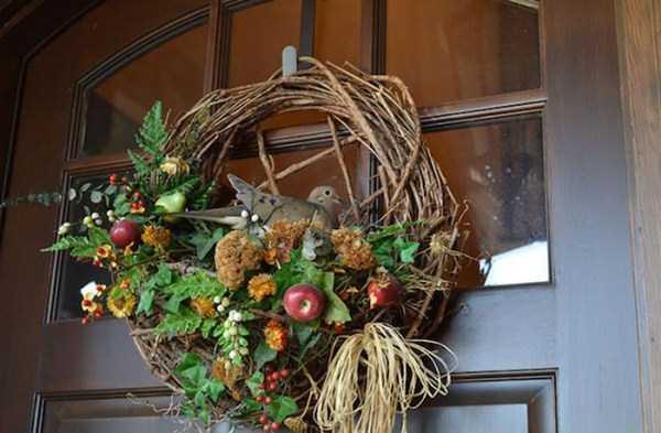 bird-nests-in-unusual-places (28)