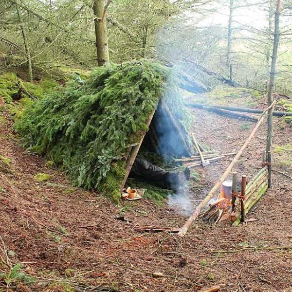diy-shelter-in-the-woods (7)