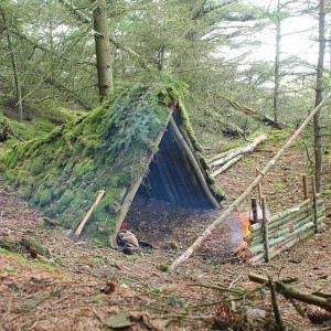 How To Build A Cozy Shelter In The Woods (10 photos) 8