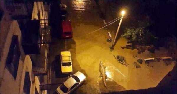 flooded-zoo-in-tbilisi (23)