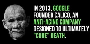 A Few Interesting Facts About Google (18 photos) 12