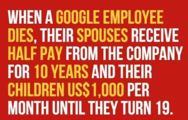 google-facts (3)