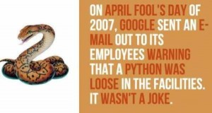 A Few Interesting Facts About Google (18 photos) 6