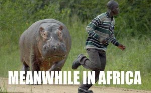 Meanwhile in Africa (34 photos) 31