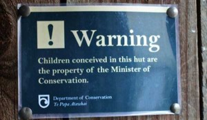 Meanwhile In New Zealand (27 photos) 16