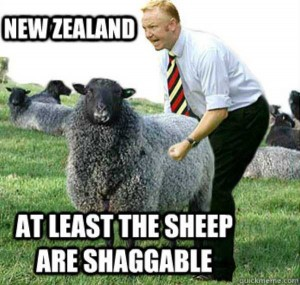 Meanwhile In New Zealand (27 photos) 22