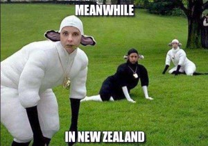 Meanwhile In New Zealand (27 photos) 23