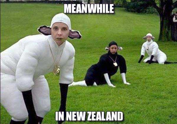 meanwhile-in-new-zealand (23)