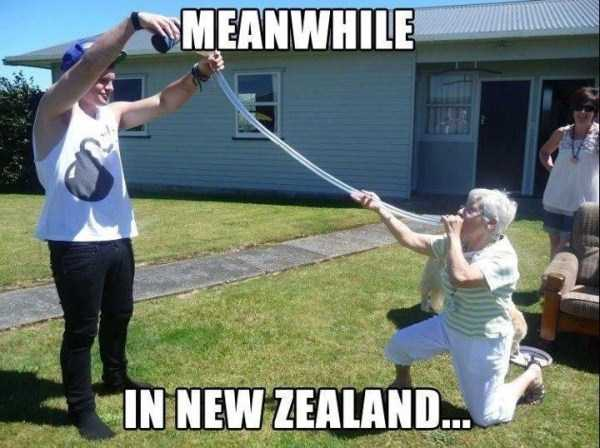 meanwhile-in-new-zealand (25)