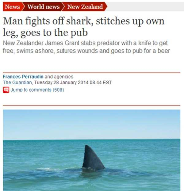 meanwhile-in-new-zealand (6)