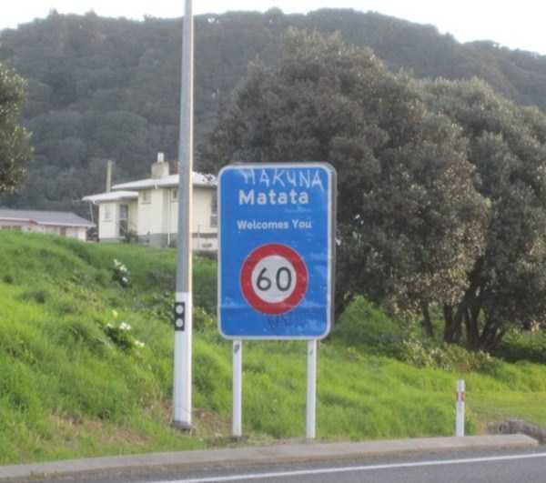 meanwhile-in-new-zealand (7)
