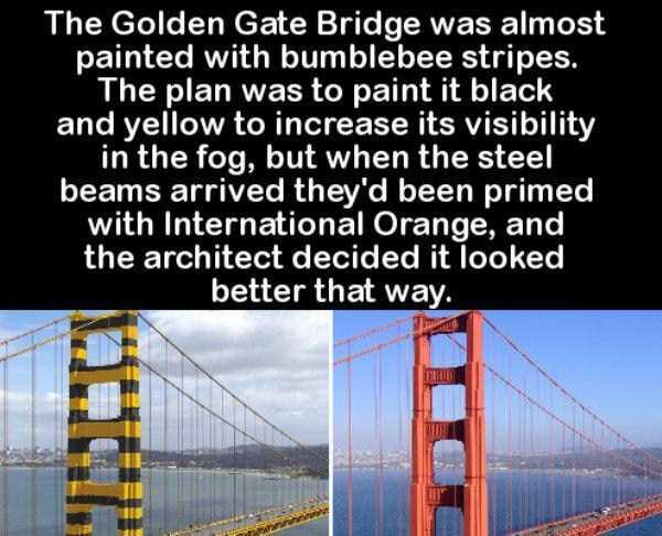 random-cool-facts (16)