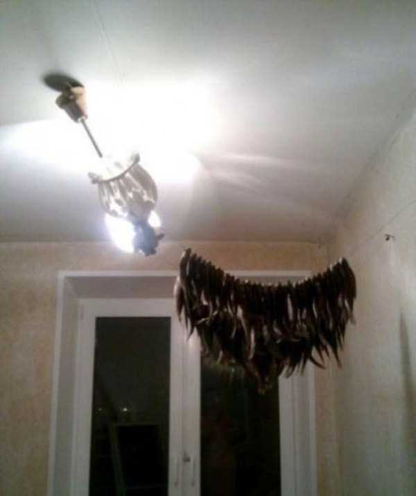 weird-things-spotted-in-russia (10)