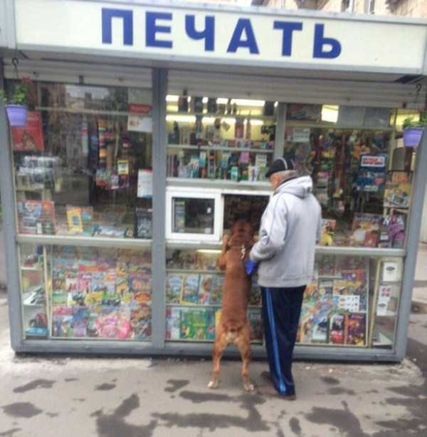 weird-things-spotted-in-russia (26)