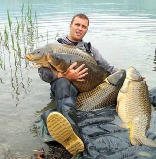 weird-things-spotted-in-russia (30)