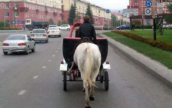 weird-things-spotted-in-russia (36)