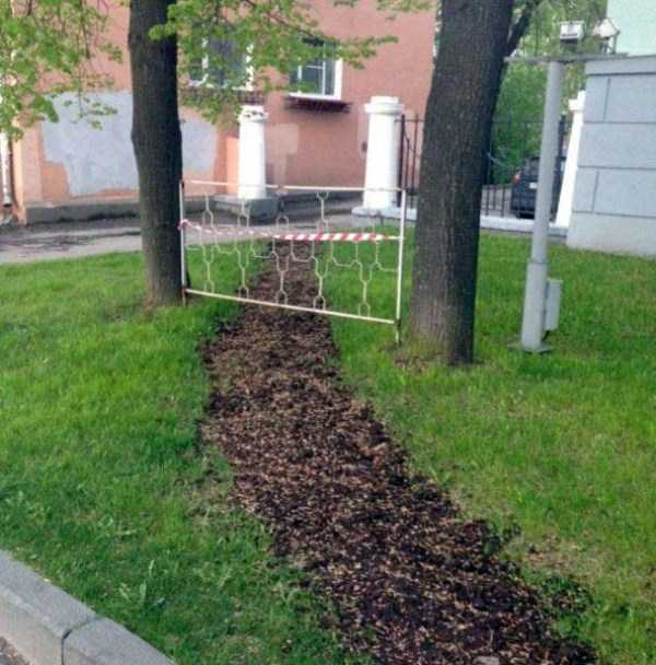 weird-things-spotted-in-russia (46)