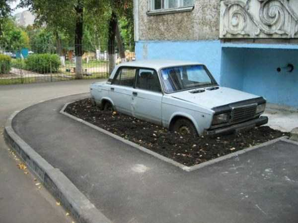 weird-things-spotted-in-russia (8)