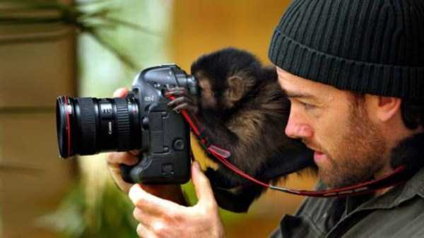 animals-photographers (17)