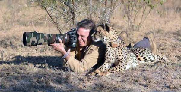 animals-photographers (18)