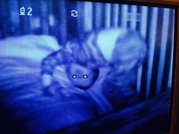 bizarre-creepy-pictures (16)
