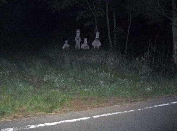 bizarre-creepy-pictures (22)